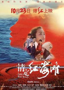 情定红海滩