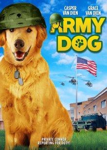 军犬 7.2 勇敢军犬上演危险潜伏