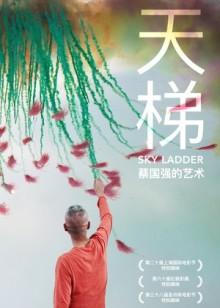 天梯:蔡国强的艺术百度影音