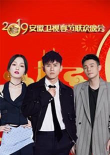 2019安徽卫视春晚