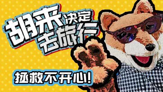 """网红藏狐""""贱""""游香港"""