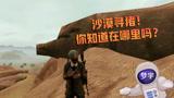 和平精英:沙漠猪形石头打卡点,你知道在哪吗?