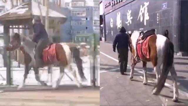 東北大爺騎馬幫朋友買菜被民警攔下:我聽話 回去騎電動車去