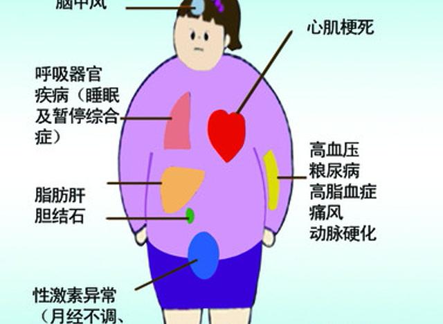 肥胖的人 寿命比常人短吗 身材太胖 有哪些影响