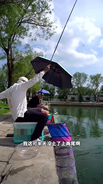 刘松松与影视明星张双利切磋钓鱼,感觉看了一场大戏!