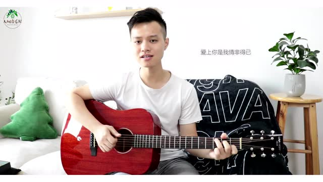《情非得已》庾澄庆-吉他弹唱教学-大树音乐屋