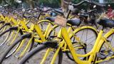 印度:感谢中国!ofo共享单车进驻印度市场,致力缓解印度环境污染!