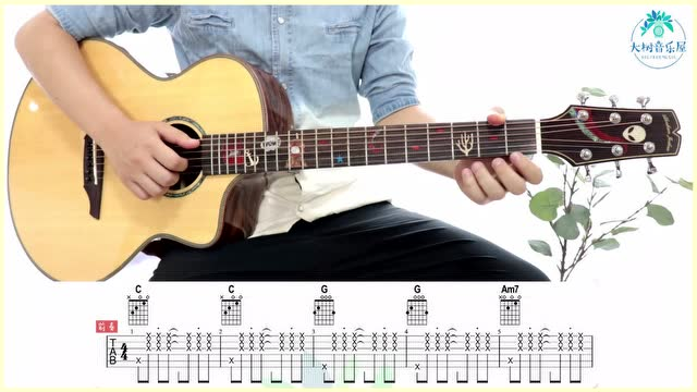 《阳光宅男》周杰伦-吉他弹唱教学-大树音乐屋