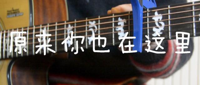 「吉他弹唱入门系列教程」第二十八集-「原来你也在这里」刘若英