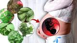 备孕时如何预防胎儿畸形?