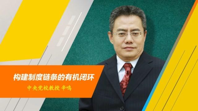 專訪丨中央黨校教授辛鳴:構建制度鏈條的有機閉環