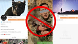 男子为吸粉直播猎杀野生动物 平台方:已查封相关账号