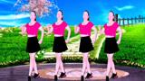 广场舞《我到底错哪里》现代舞歌美舞美