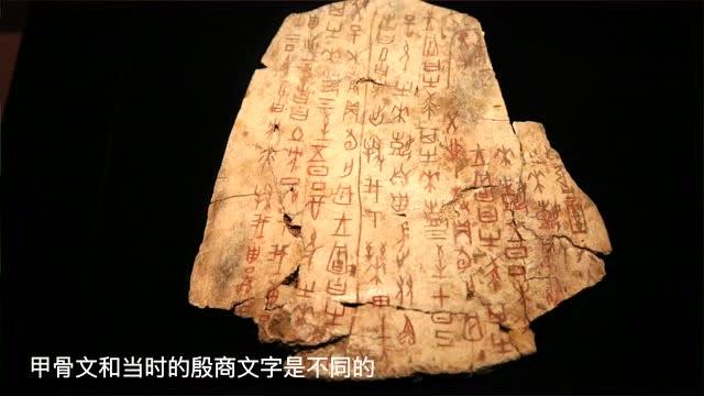 博物館時光丨日、月、山、水…聽國博田老師講甲骨文上的那些字兒