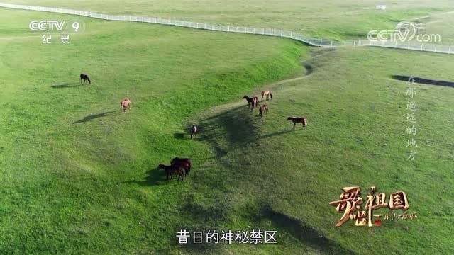 【歌唱祖國·一首歌一座城】青海海北州 《在那遙遠的地方》
