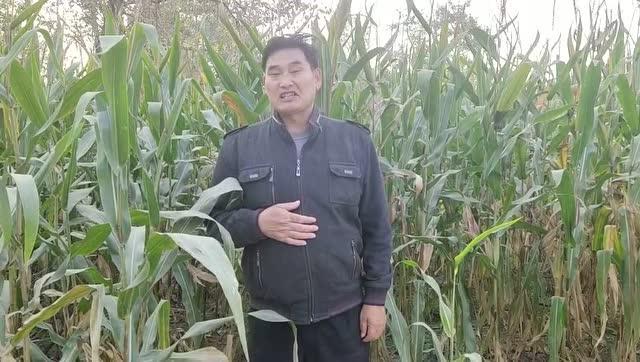 #朱之文#騰訊新聞的網友大家好,我是大衣哥朱之文,很高興認識大家。