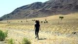 纳米比亚公路旅行