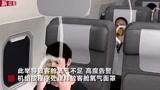 源起副驾驶吸电子烟!国航航班紧急下降事件初查结果公布
