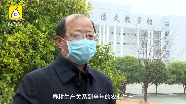華中農業大學發倡議:開學還早就地下田!校友:一定好好種地