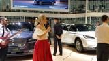 2020年成都西博城大型车展活动,林肯展台外国乐队歌唱表演