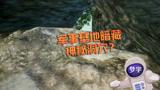 和平精英:军事基地暗藏神秘洞穴,里面空间原来这么大!