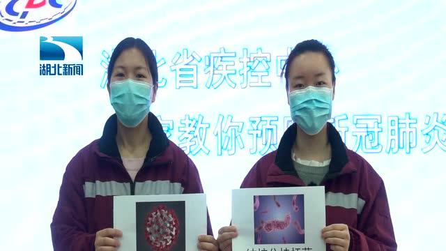 病毒和細菌二