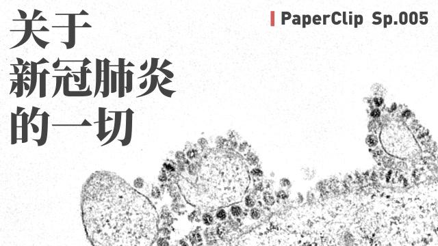 回形針:關於新冠肺炎的一切