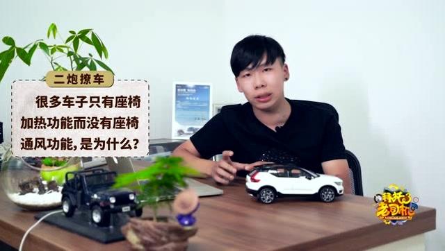"""買車到底選""""雞頭""""還是選""""鳳尾""""?兩者差別大嗎?"""