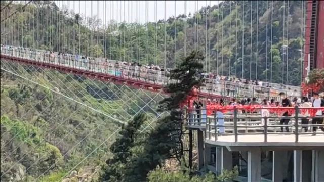 一景区游客因翻越护栏捡手机失足坠亡