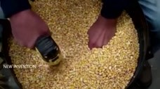 自制日打1万斤的剥玉米机器!看看是不是比向往的生活里的简单!