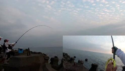 前打钓鱼,虱目鱼作饵,20几斤的巨物上岸,差点破纪录