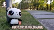 融融打卡深圳湾公园