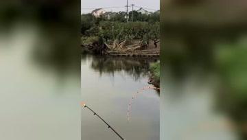 钓鱼这才是高手,都不需要提前打窝,抛竿就中鱼鱼儿抢着咬钩