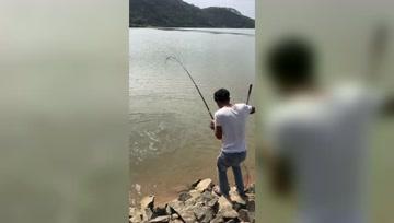 野河钓大物,好不容易上一条大鱼,只可惜钓友不会拉竿!