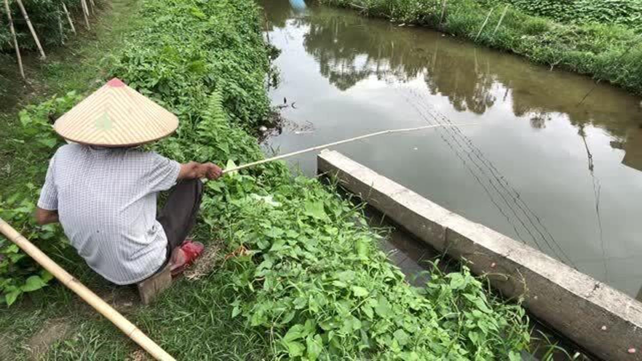 农村大爷用竹竿在河里钓鱼,1个多小时,就有这样的收获!