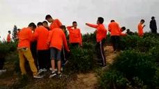 中学生在福建邵武第二中学基地茶山体验采茶乐趣