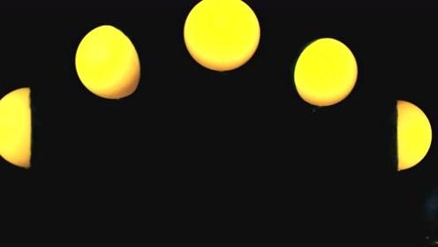 教科版二年級科學上冊第一單元我們的地球家園4 觀察月相