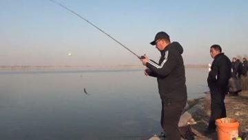 今天鱼太给面子了,钓友现场学习挑逗钓法,一小时我竟狂拉几十条