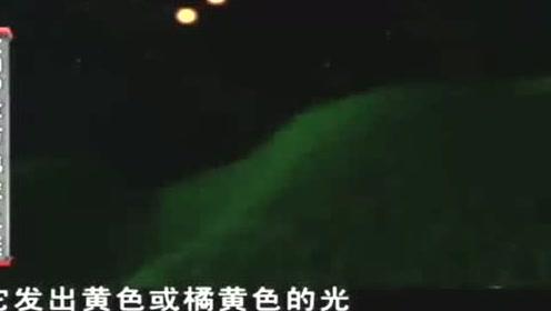 2019年11月16日洛杉矶夜空两个UFO一个瞬间消失 第14张