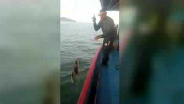 钓上来就不应再丢下去啊,下次还是会被钓鱼的钓到!