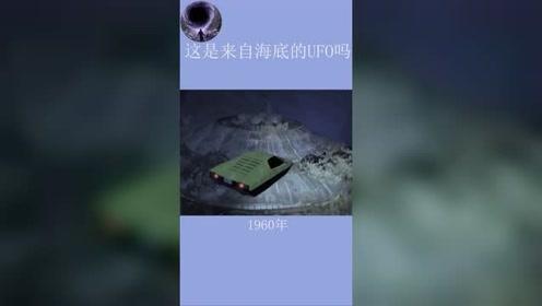 海底神秘生物还是UFO 第17张