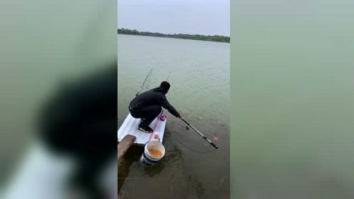 野河钓鱼好地方,刚抛竿就中几十斤大鱼,这地方隐藏无数大鱼