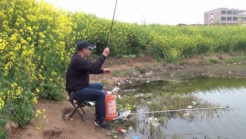 经典漂相:幽静美丽的外河道,小竿细线,连竿野生精品鲫鱼!