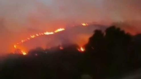 廣東饒平突發山火,官方:高速上貨車自燃導致