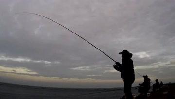 矶钓,全是巨物,鱼竿弯到90度,这感觉爽歪歪