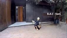 深圳B.A.C花式足球团队