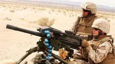 一旦全球战争打响,多少国家会追随美国作战?专家:40国都算少的