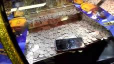 大神带你见识一下,在游戏厅里推币机得到手机的过程