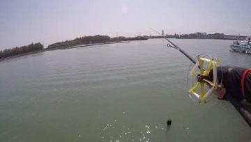 前打钓鱼,海鲢迫不及待上钩,还好还有石斑鱼