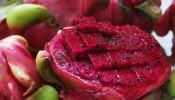 湿气重少吃这三种水果